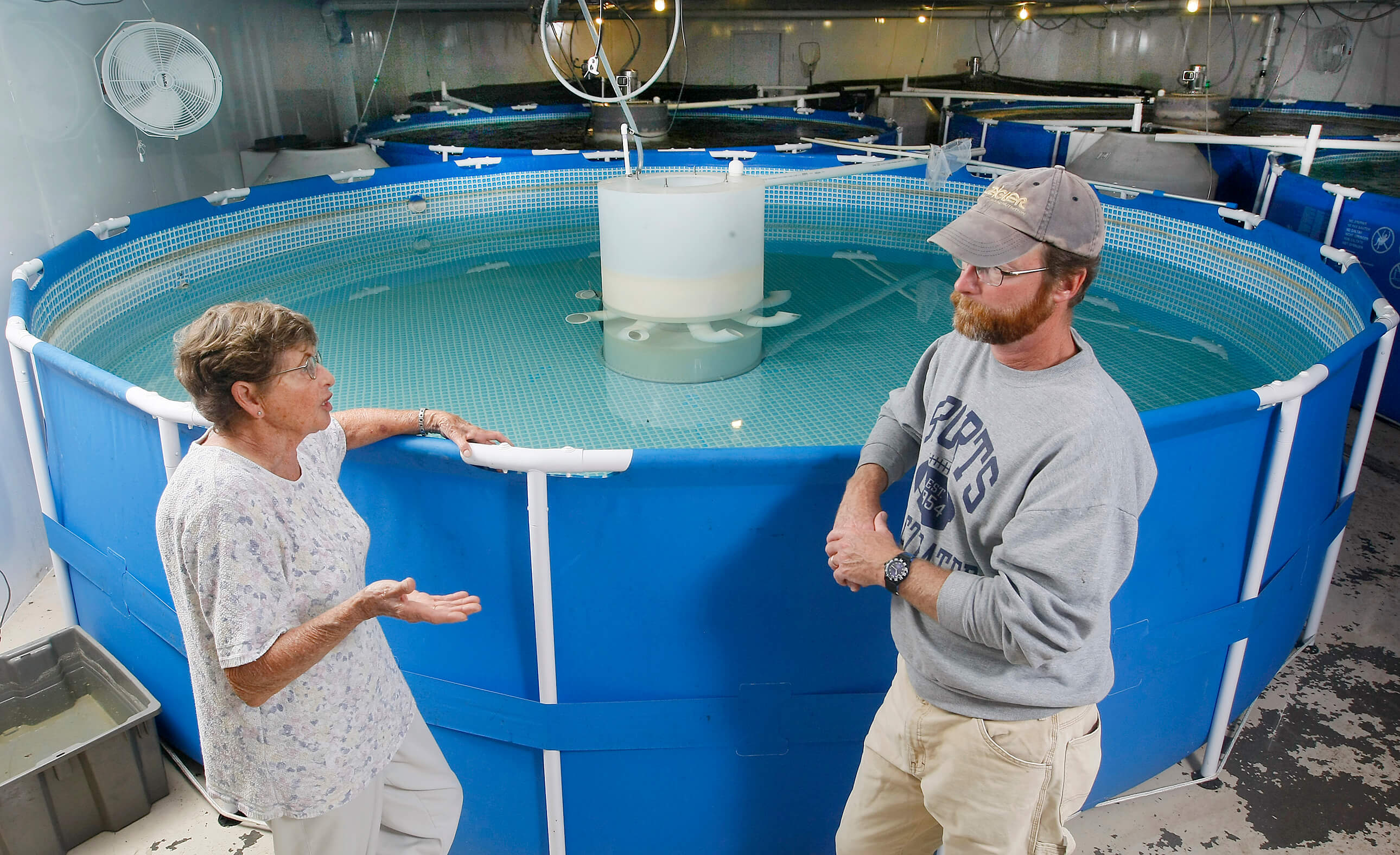 Gulf oil spill spurs interest in indiana shrimp farming for Indiana fish farms