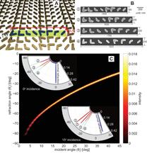 plasmonic nanoantennas