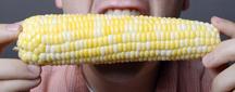 ear of sweet corn