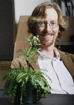 Brian Dilkes Arabidopsis