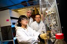 new device concentrates foodborne salmonella