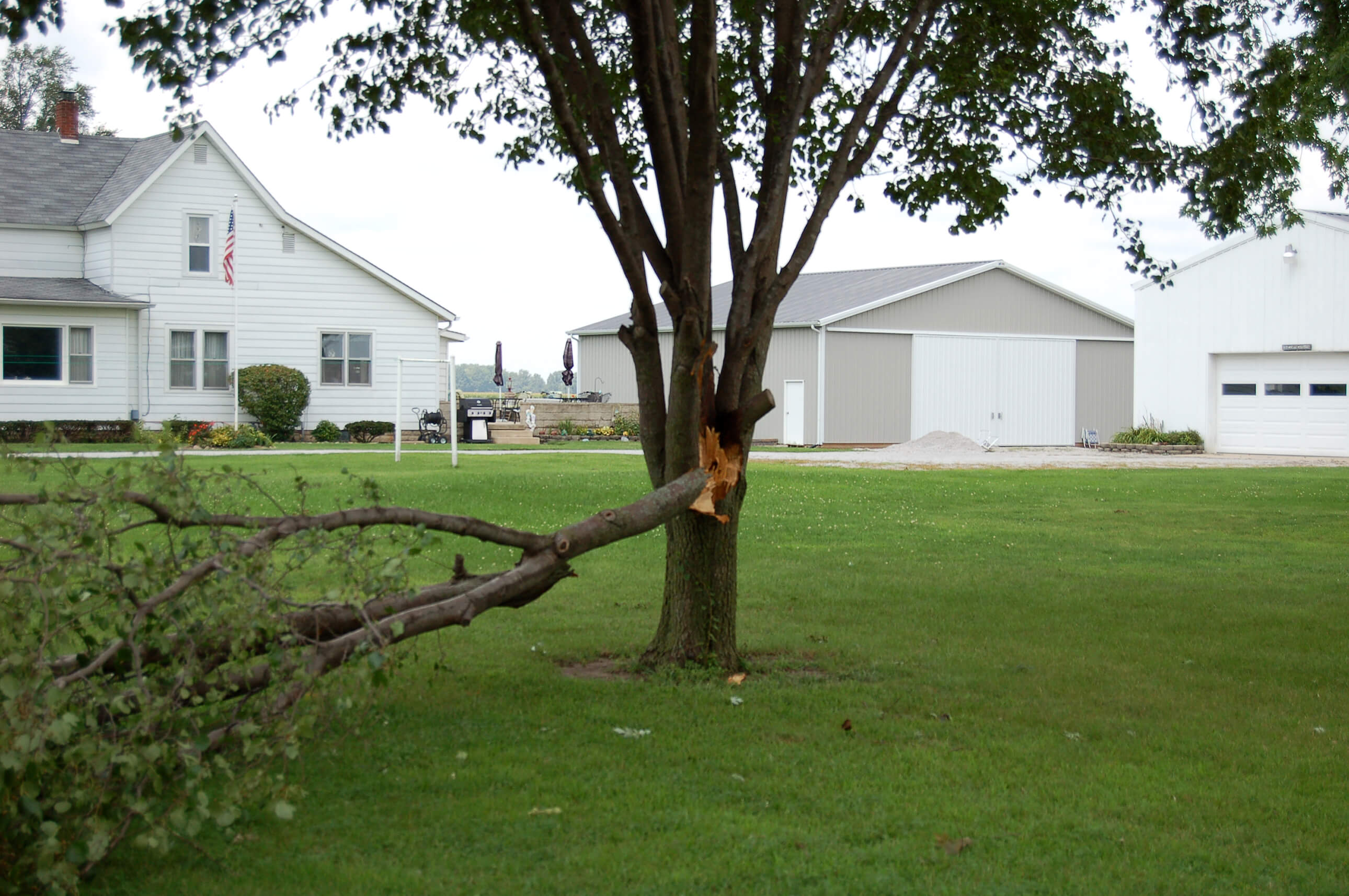 Extension Resources Help Homeowners Cope With Tree Damage - Purdue University
