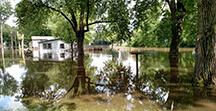 Cain flood