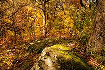 Glenn Chang Natural Places