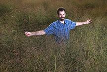 Mosier switch grass
