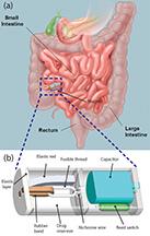Ziaie schematic