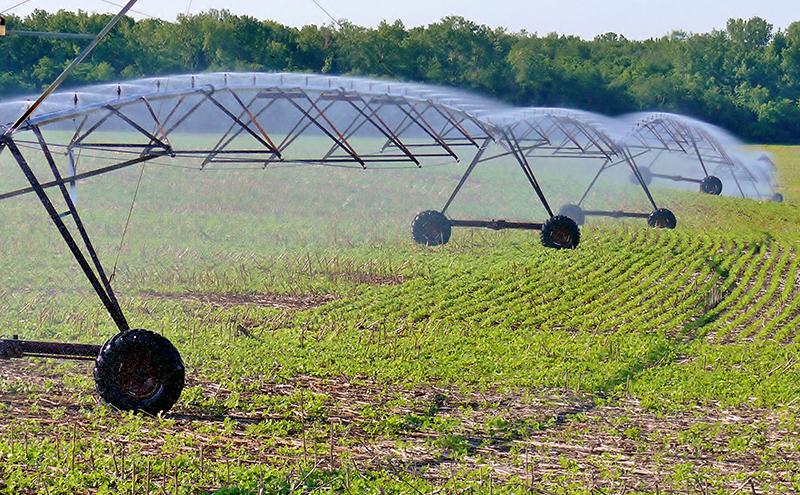 Kelley irrigation