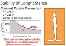 Raman posture