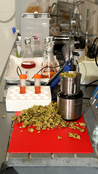 hopslab sample02