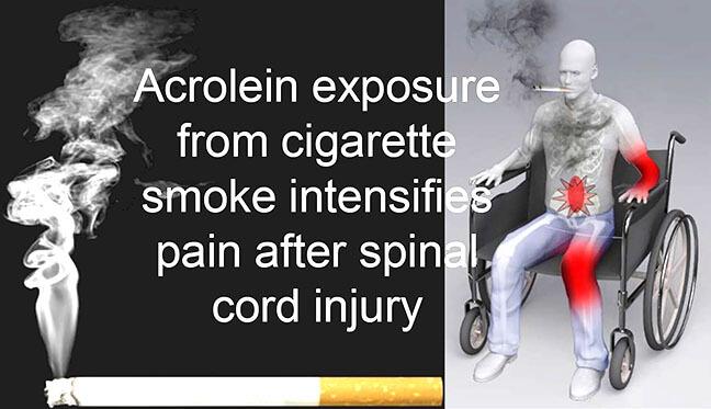 Smoking spinal