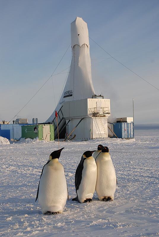 Antartica drill