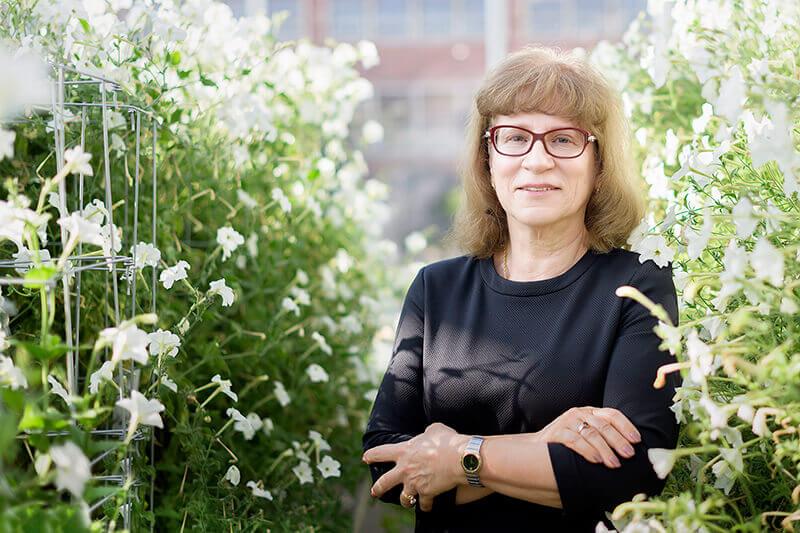 Natalia Dudareva