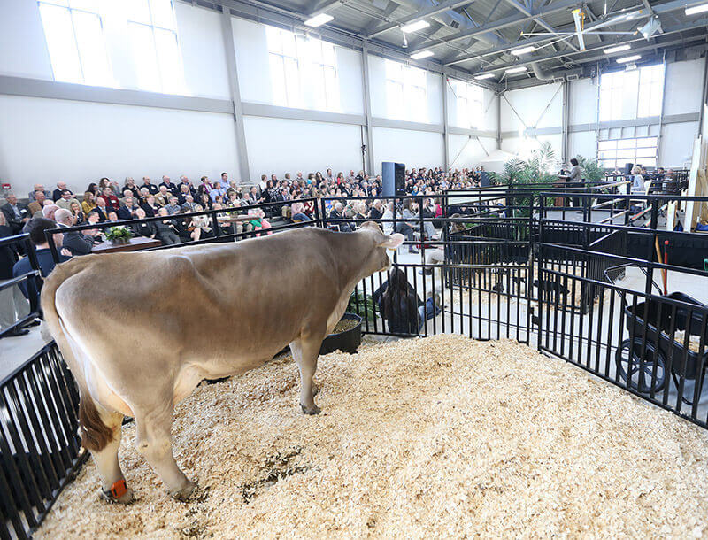 Purdue Celebrates Dedication Of New Animal Sciences Complex News
