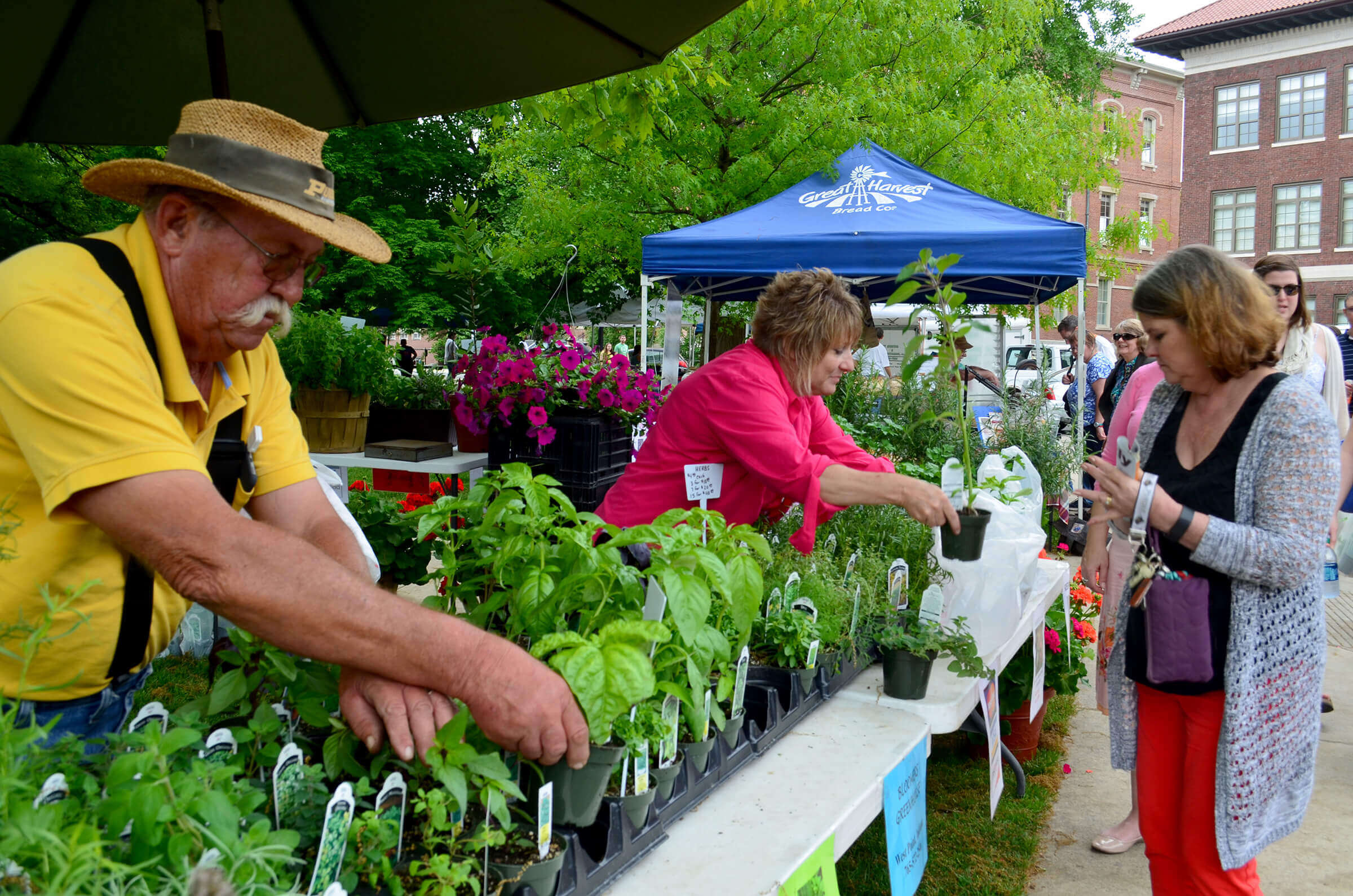 Image result for purdue farmers market