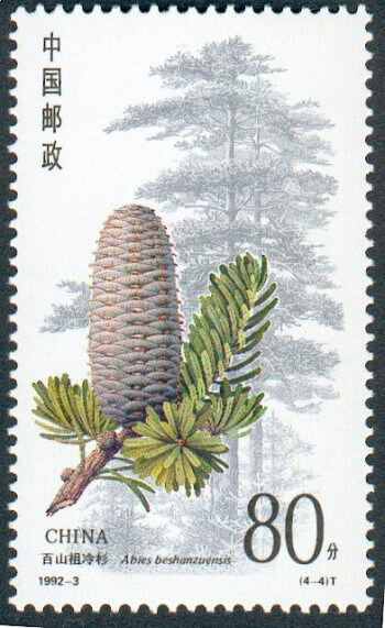 Dai tree