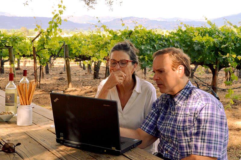 Ebert vineyards