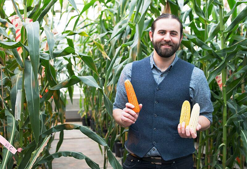 Evan Rocheford orange corn