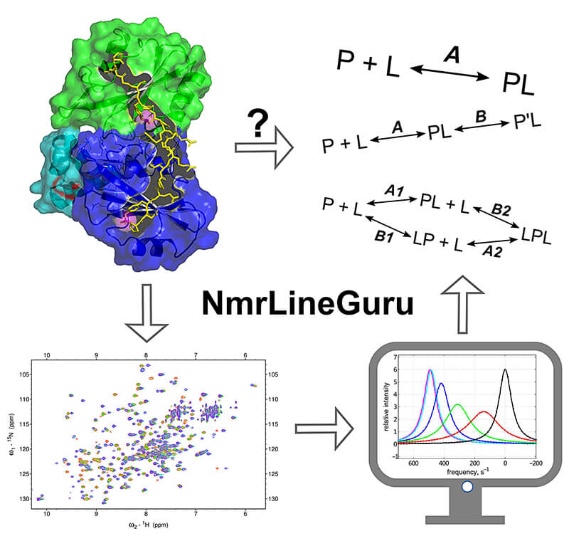 protein info