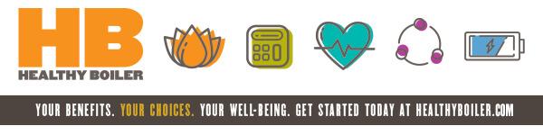 Healthy Boiler Program's five pillars