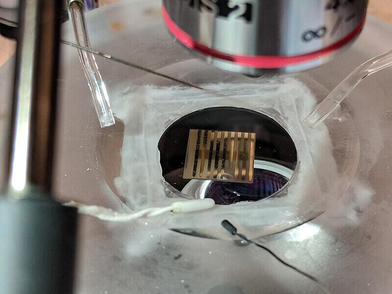Ramanathan biosensor