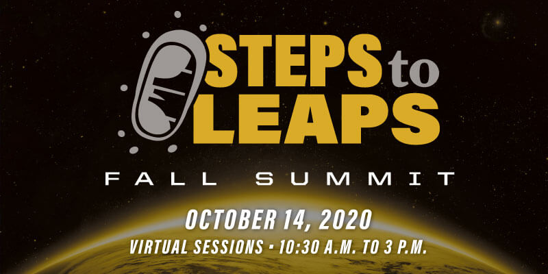 Steps to Leaps Summit graphic