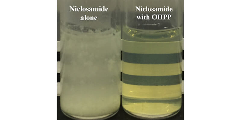 pure-niclosamide
