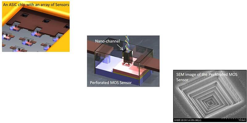 saeed-sensor