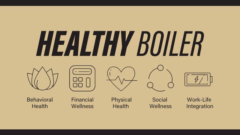 Healthy Boiler graphic