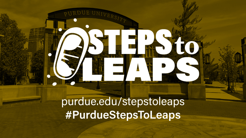 Steps to Leaps graphic